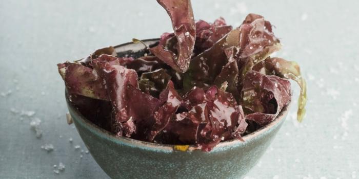 algen essen ideen salat algenarten