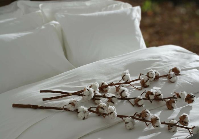bio baumwolle bettwäsche textilien bevorzugen