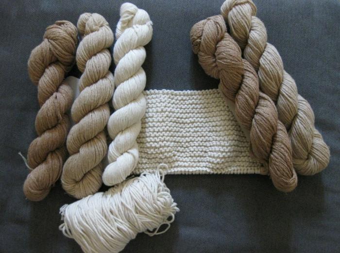 Wichtige Tatsachen über Die Bio Baumwolle