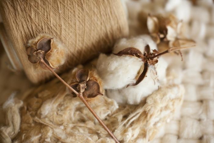 bio baumwolle herstellung garn stoffe textilien