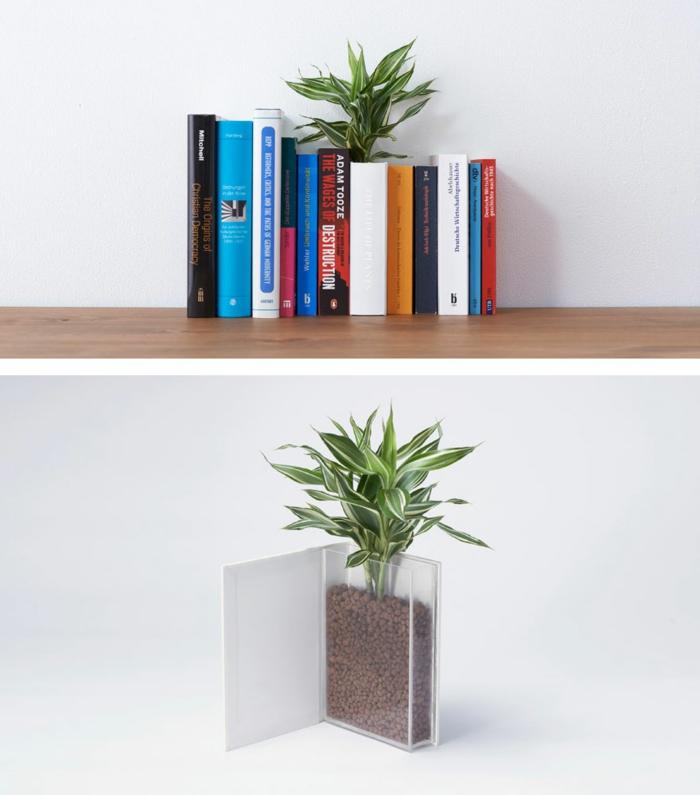 blumenkübel zimmerpflanzen buch pflanzkübel übertopf