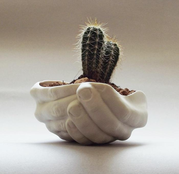 blumenkübel zimmerpflanzen handvoll kakteen kieselsteine