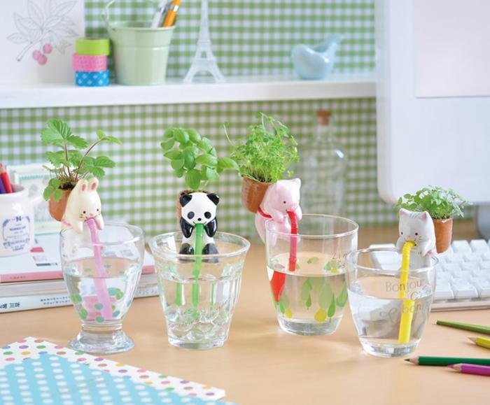 blumenkübel zimmerpflanzen küchenkräuter strohhalme