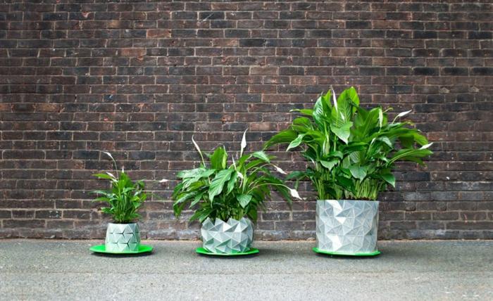 pflanzkübel zimmerpflanzen wachsender pflanzkübel innovativ