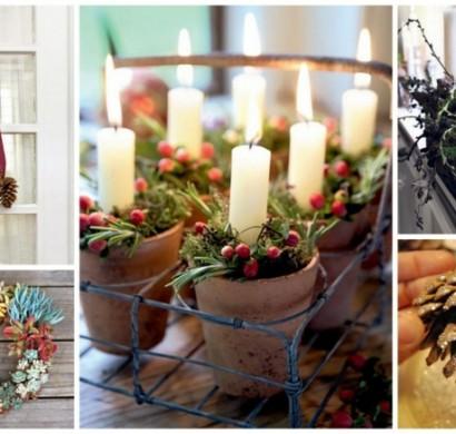 diy-deko-ideen-weihnachten-adventszeit-sukkulenten-zapfen-wacholder