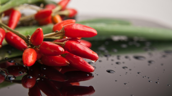 gewürze liste chili positive wirkung metabolismus