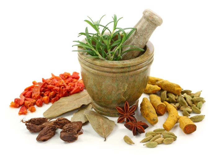 gewürze online gesund kochen kräuter rosmarin chili ingwer