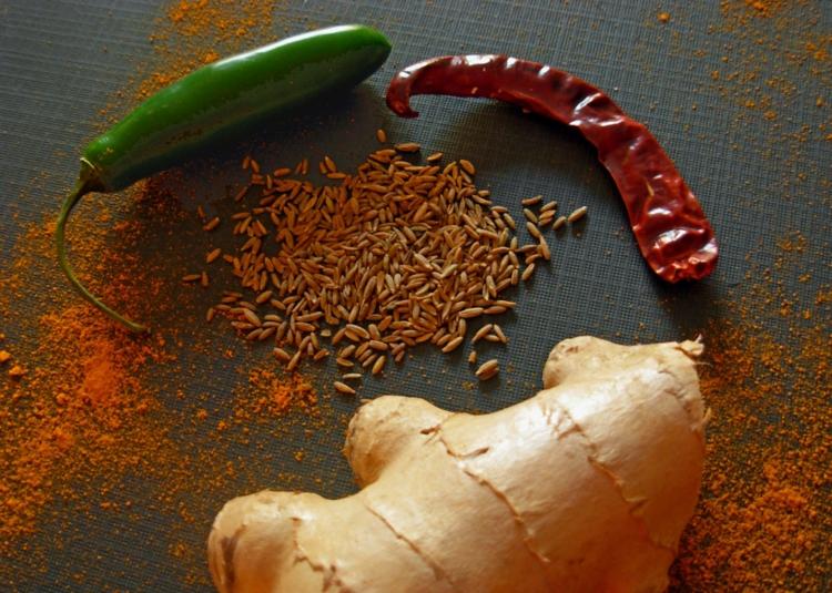 indische gewürze Liste indisches essen kochen