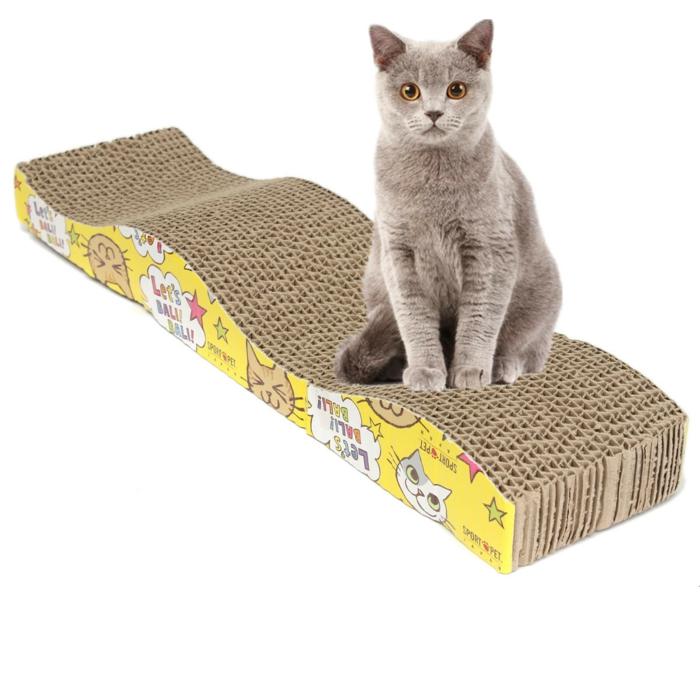 katzen erziehen tipps katzenmöbel hauskatze pflege
