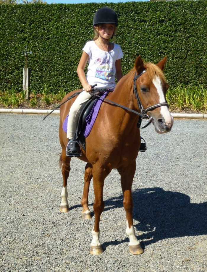 kindersport auswählen reiten mädchen sportarten kinder