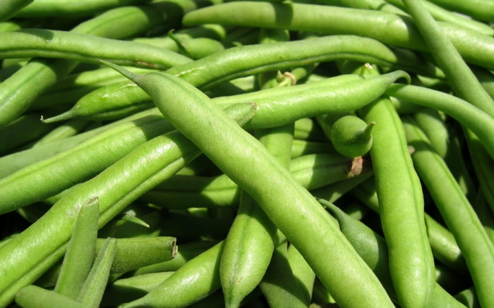 proteinquellen-gesund-pflanzlich-grüne-bohnen