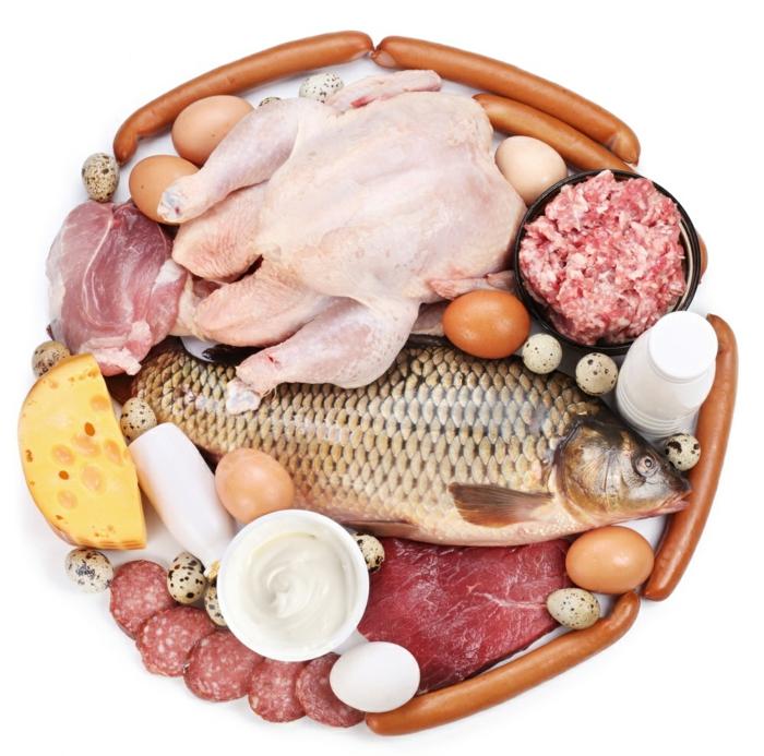 proteinquellen-milch-fleischprodukte-fisch-eier