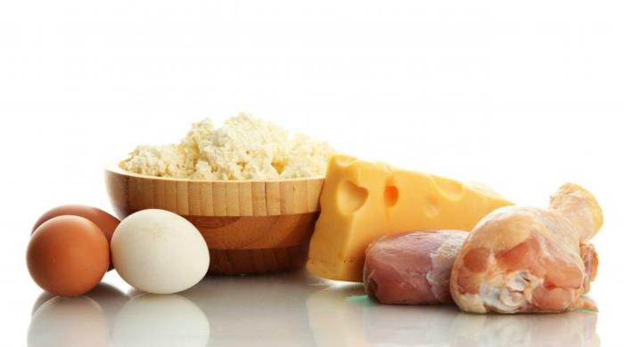 proteinquellen-milchprodukte-käse-fleisch-eier