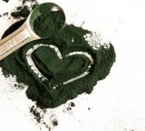 Entdecken Sie die Superkraft der Spirulina Algen