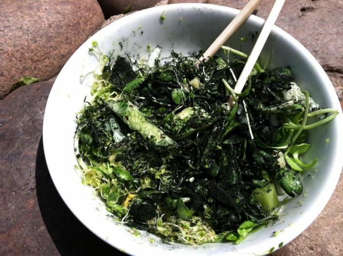 spirulina  algen gesunde rezepte grüner salat