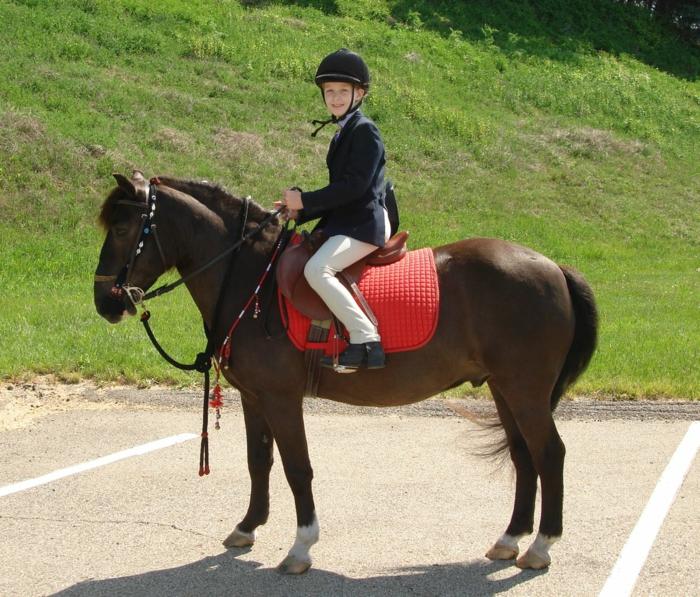 sportarten für kinder pferd reiten mädchen
