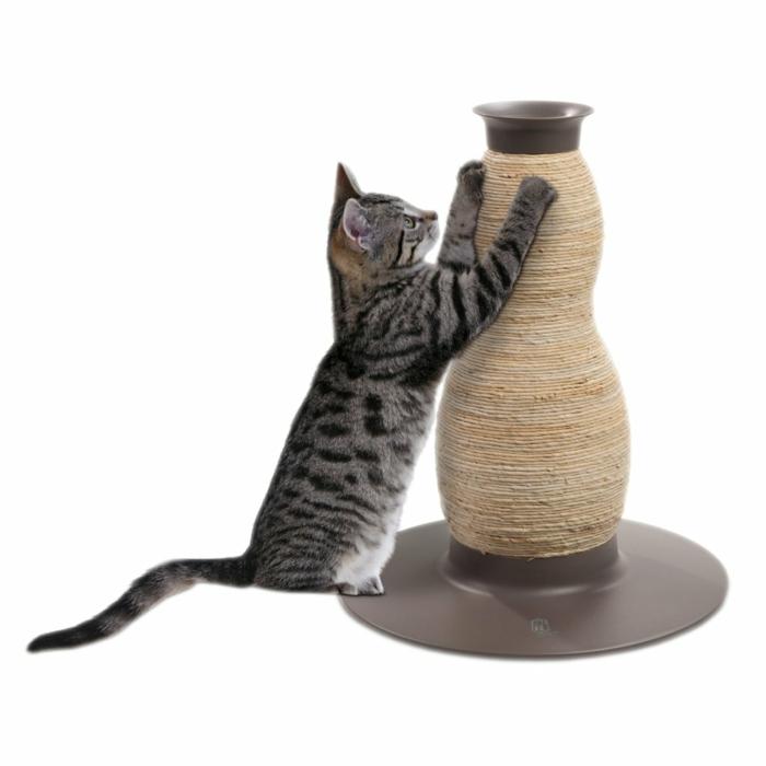 tipps katzen erziehen hauskatze kratzbaum design