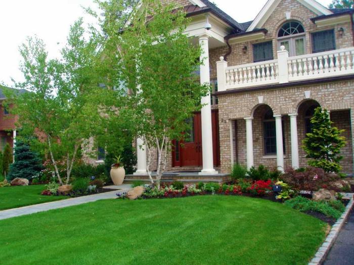 vorgarten gestalten gartenpflanzen grüner rasen