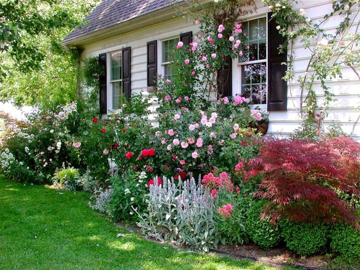 vorgarten gestalten kleiner vorgarten ideen reiche bepflanzung - Kleinen Vorgarten Gestalten