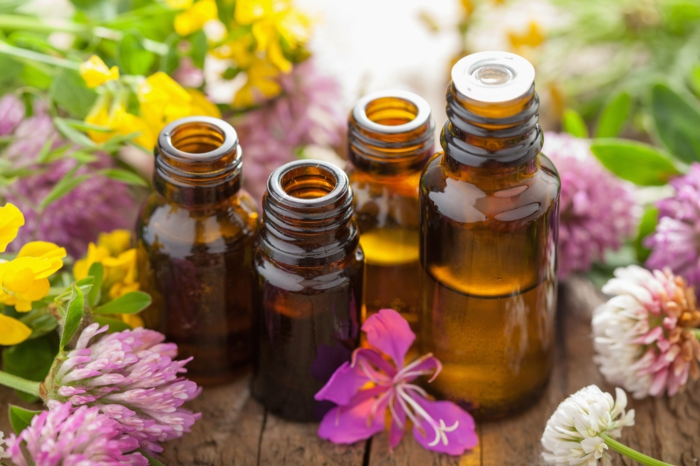 wacholder gebrauch aromatherapie lifestyle