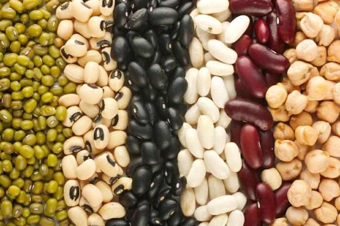 wo sind proteine drin bohnen gesundes essen