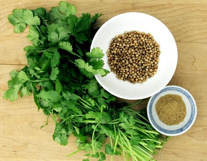 zauber der gewürze koriander gesund gesundes abnehmen tipps