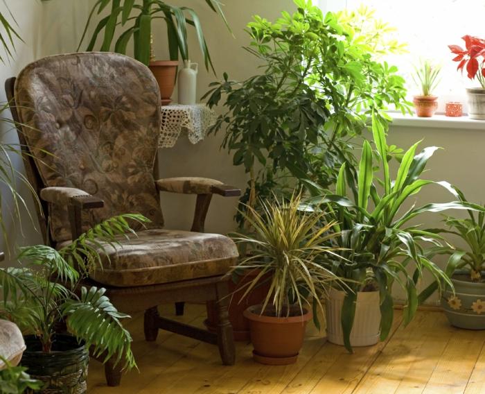 wohnung einrichten bodenbelag interiordesign zimmerpflanzen