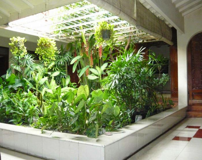 wohnung einrichten bodenbelag interiordesign sauerstoffquelle hause wintergarten