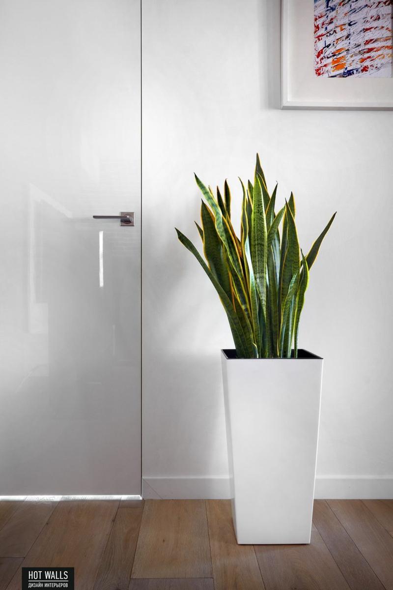 Einrichtungsbeispiele vom russischen designstudio hot walls for Zimmerpflanzen wohnzimmer