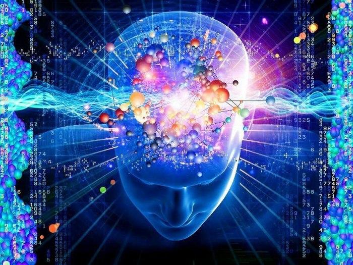 bewusstsein definition menschliches gehirn lifestyle