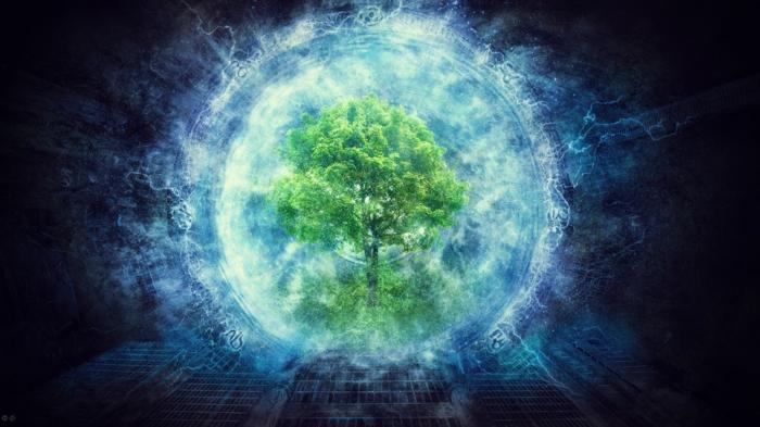 bewusstsein definition menschliches gehirn seele bewusstsein