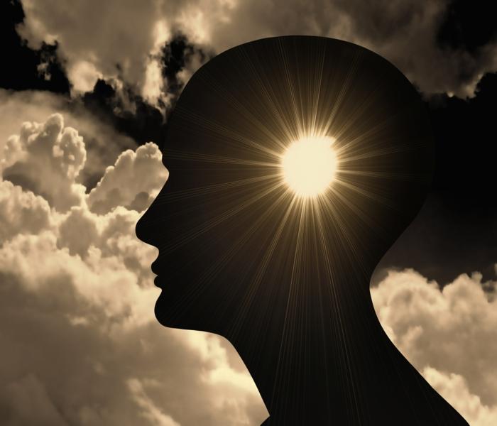 bewusstsein gehirn intuition lifestyle