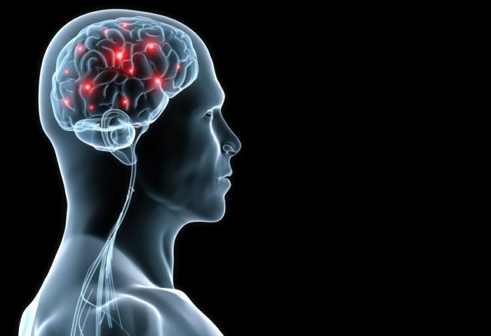 bewusstsein gehirn mensch welt wahrnehmen