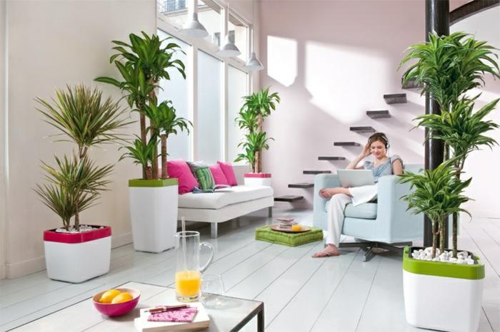 Sch ne zimmerpflanzen so dekorieren sie ihr zuhause mit for Moderne zimmerpflanzen