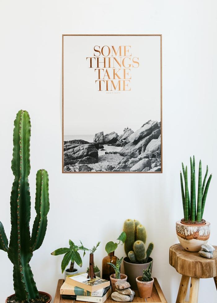 wohnzimmer pflanzen wenig licht : So dekorieren Sie Ihr Zuhause mit ...