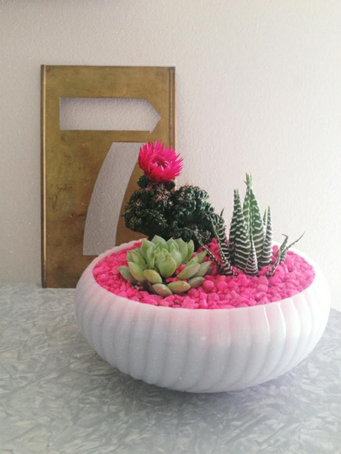 Sch ne zimmerpflanzen so dekorieren sie ihr zuhause mit for Originelle zimmerpflanzen