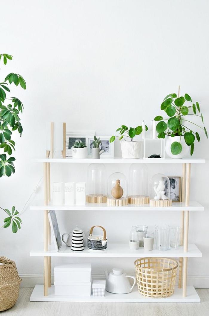 Sch ne zimmerpflanzen so dekorieren sie ihr zuhause mit for Dekoartikel holz