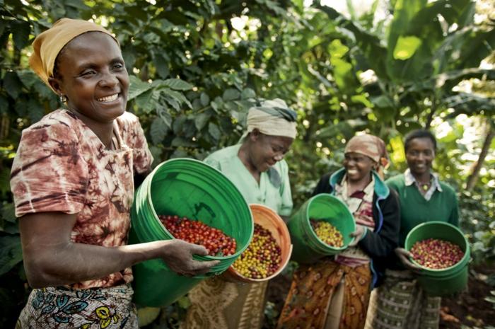 weihnachtsgeschenkideen fair trade soziale gerechtigkeit kaffee