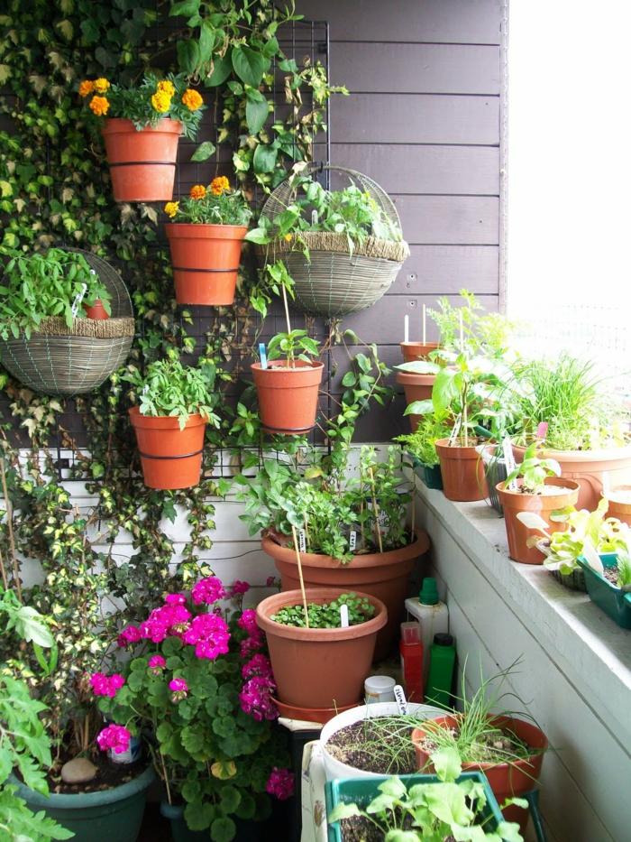 balkon gestalten balkonpflanzen blumen garten gestalten