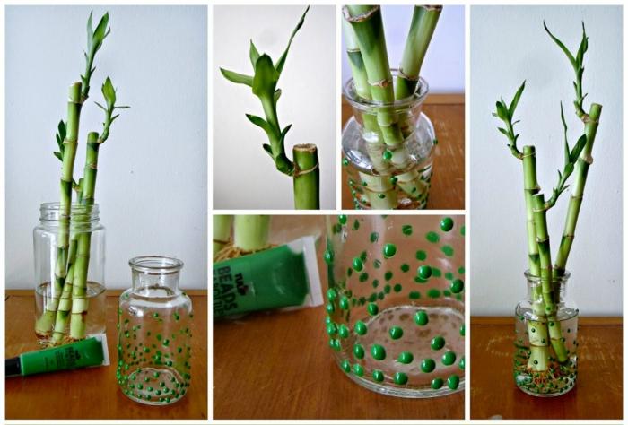 bambus deko glücksbambus grüne zimmerpflanze dekoration glas