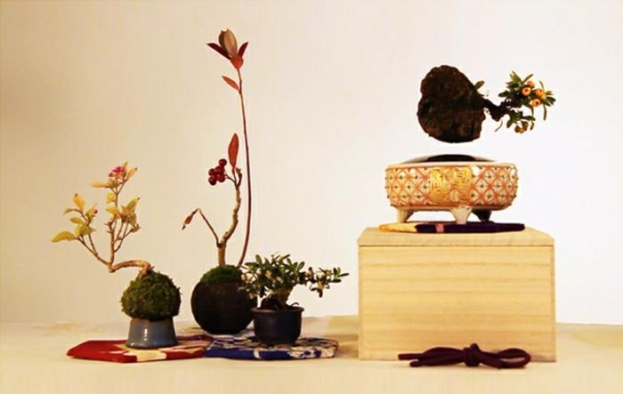 bonsai baum air fliegend basis schalen magnet pozellan hand gemacht