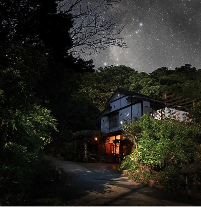 bonsai baum air japan insel kyushu