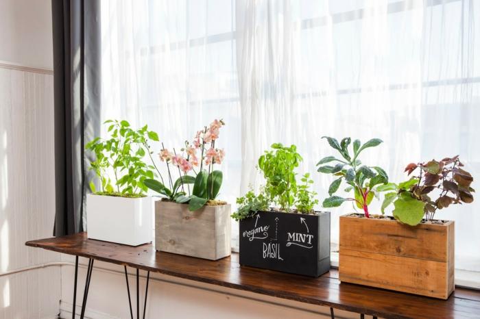 dekotipps fensterbank pflanztöpfe frisch luftige gardinen