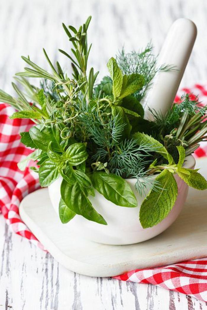 gewürze kaufen kräuter küche kräutergarten anlegen basilikum rosmarin thymian