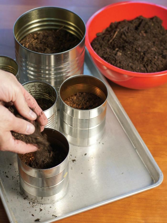 gewürze kaufen kräuter küche kräutergarten anlegen blumenerde blechdose
