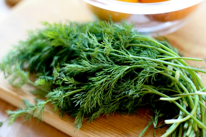 gewürze kaufen kräuter küche kräutergarten anlegen dill gesund kochen
