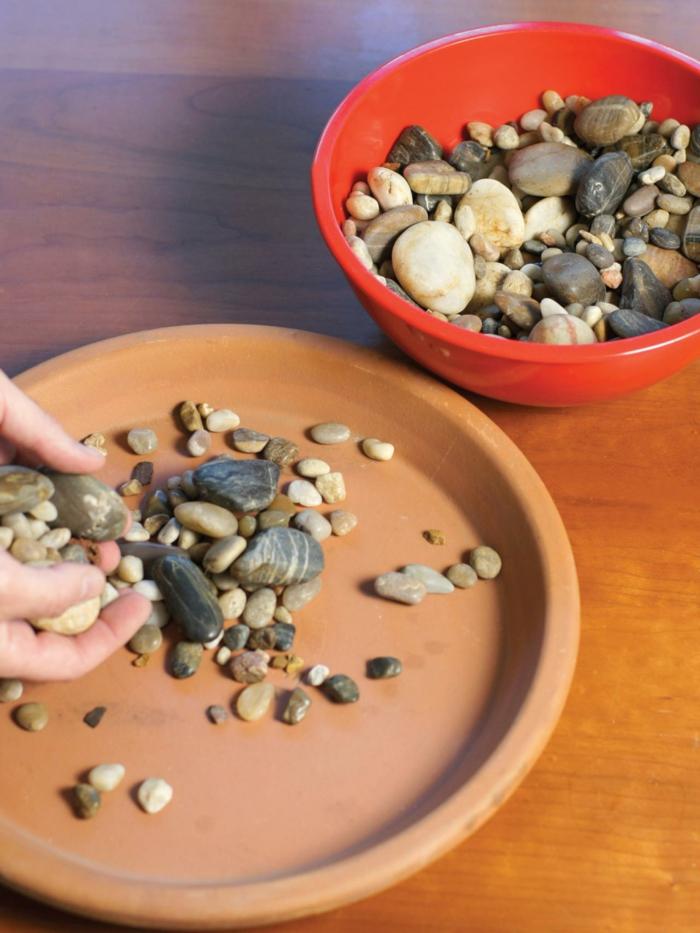 gewürze kaufen kräuter küche kräutergarten anlegen kieselsteine flussteine