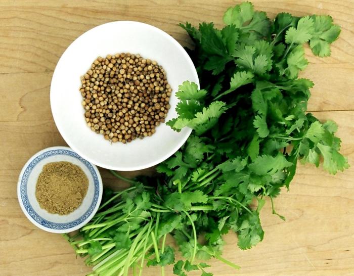 gewürze kaufen kräuter küche kräutergarten anlegen koriander gesund