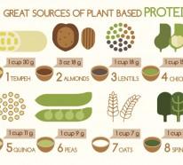 Pflanzliche Eiweiße: Welche Nahrungsmittel sind gute Proteinquellen?