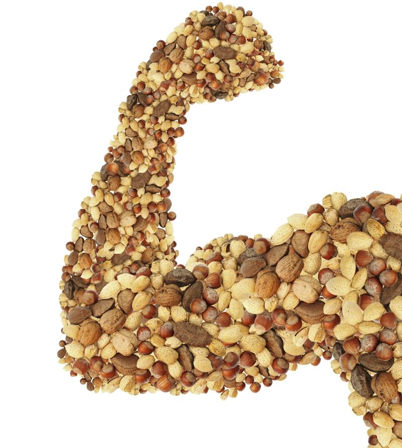 gute Proteinquellen pflanzliches Eiweiß Nüsse